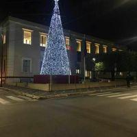 L'Albero di Floriano